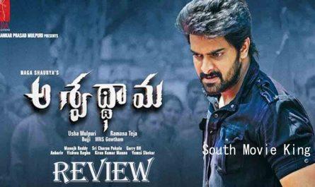 Aswathama Telugu Full Movie
