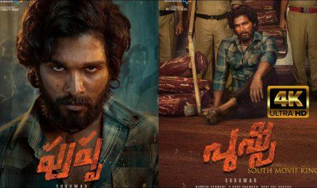 pushpa Telugu Full Movie